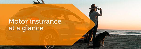 IBD_Motor_Insurance-img