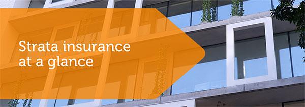 IBD_Strata_Insurance-img